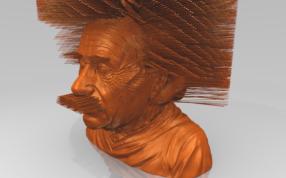 多毛爱因斯坦